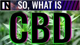 CBD Benefits Easily Explained | Inverse