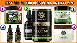 Best CBD Oil for Dogs 2020 – Best Hemp Oil for Dogs Pain & Anxiety