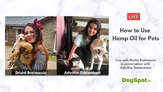 How to use Hemp Oil for Pets with Drishti Brahmania